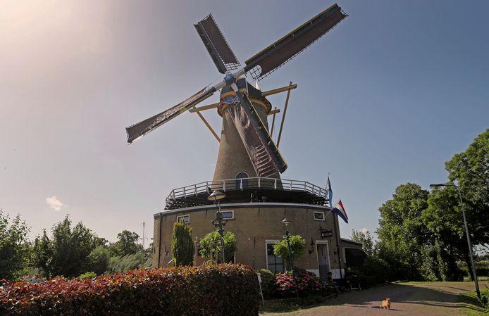 De molen in Geervliet was zaterdag open tijdens Molendag Voorne-Putten & Rozenburg.
