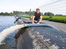 Boer na boete voor sproeien: Zonder water kan ik de boel wel sluiten