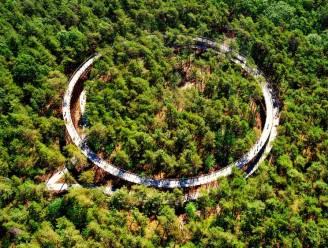 Bosland wil Nationaal Park worden