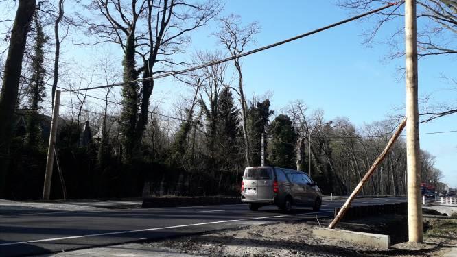Na de paddentunnels de eekhoornbrug: dieren steken op 7 meter hoog touw de straat over in Brakel