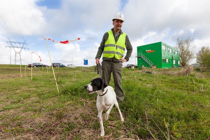 Falco Schoemaker en zijn Pointer proberen te voorkomen dat weidevogels gaan broeden op bouwterreinen.
