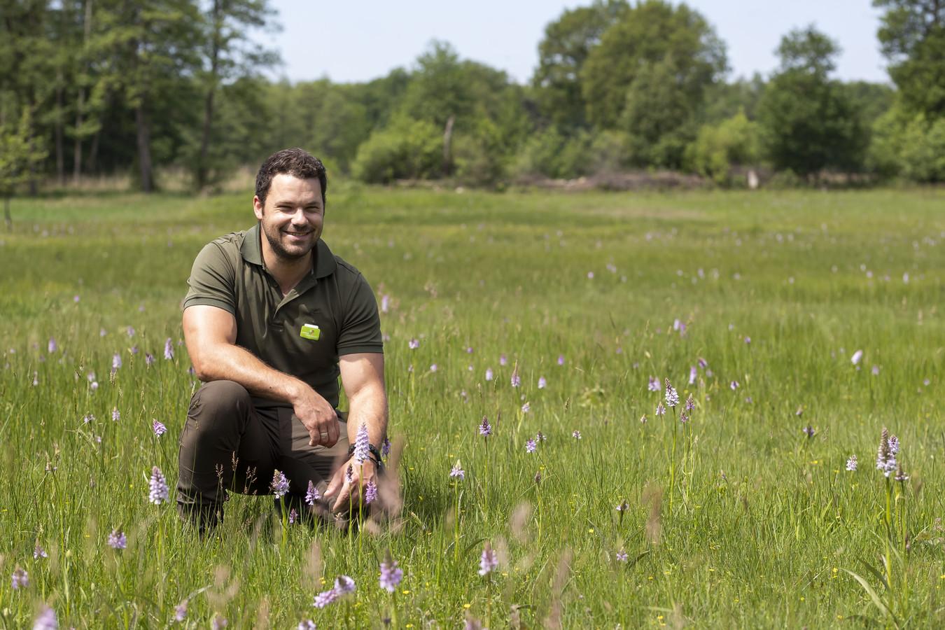 Rick Staudt van Landschap Overijssel tussen de zeldzame orchideeën in het Dal van de Mosbeek.