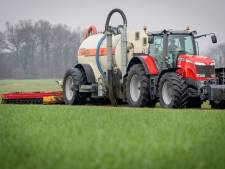Waarom (sommige) boeren meewerken aan mestfraude