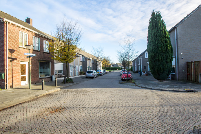 De Ter Borghstraat in Geldrop.