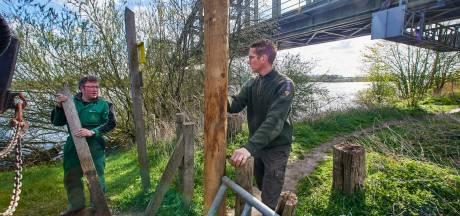 Gesloopte poorten en doorgeknipte afrasteringen: met de zomer komt ook de vernielzucht naar de uiterwaarden van de Maas