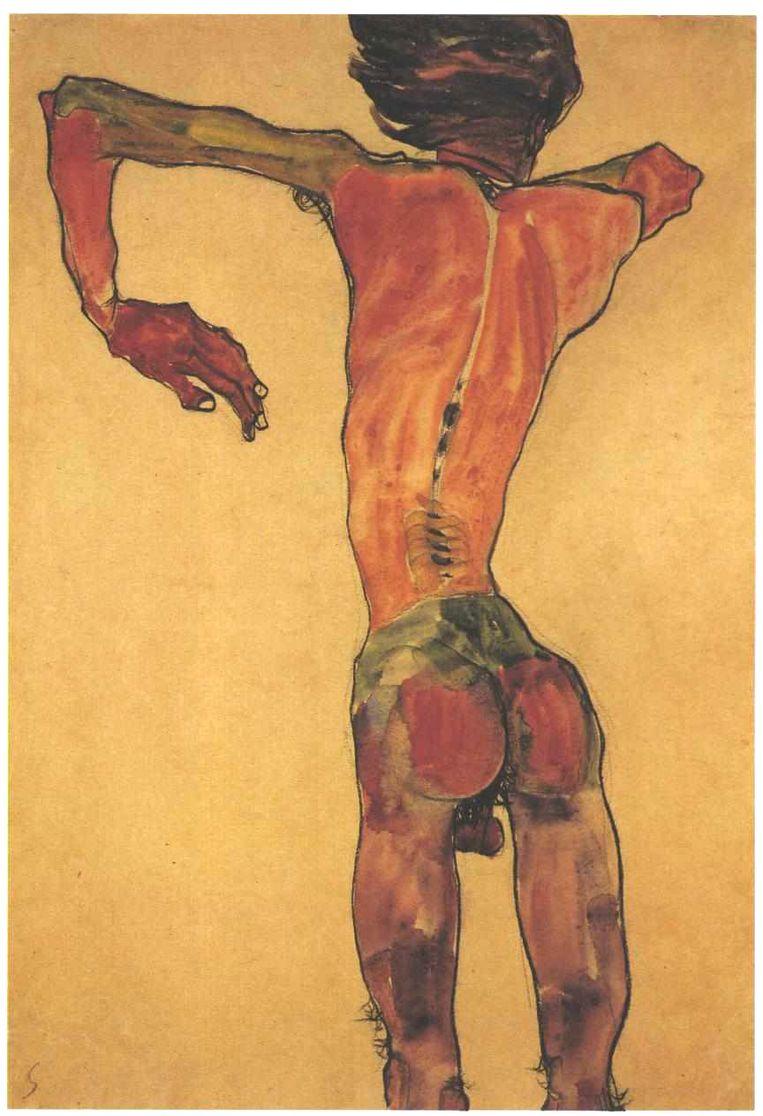 Standing Male Nude, Back View, 1910 (zelfportret) van Egon Schiele. Beeld null