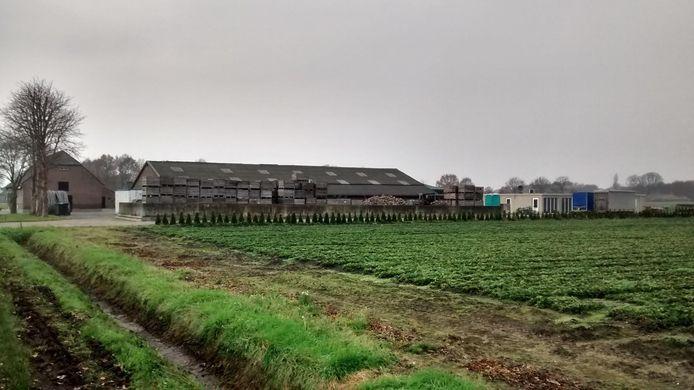 Landbouwbedrijf bij Boekel waar arbeidsmigranten in woonunits worden gehuisvest.