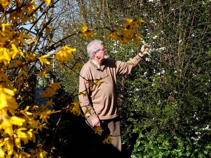 Cees mist steeds meer vlinders in de natuur: 'Landbouw en fruitteelt zijn grote boosdoeners'