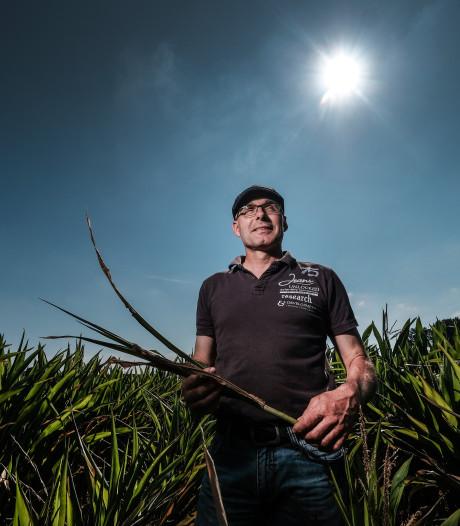 De boeren gaan straks zaaien, maar de grond is nog steeds veel te droog