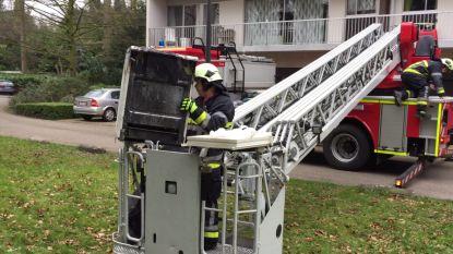 Twintigtal appartementsbewoners tijd geëvacueerd door keukenbrand in Edegem
