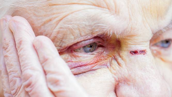 Crisisopvang voor bejaarde slachtoffers van huiselijk geweld in Arnhem