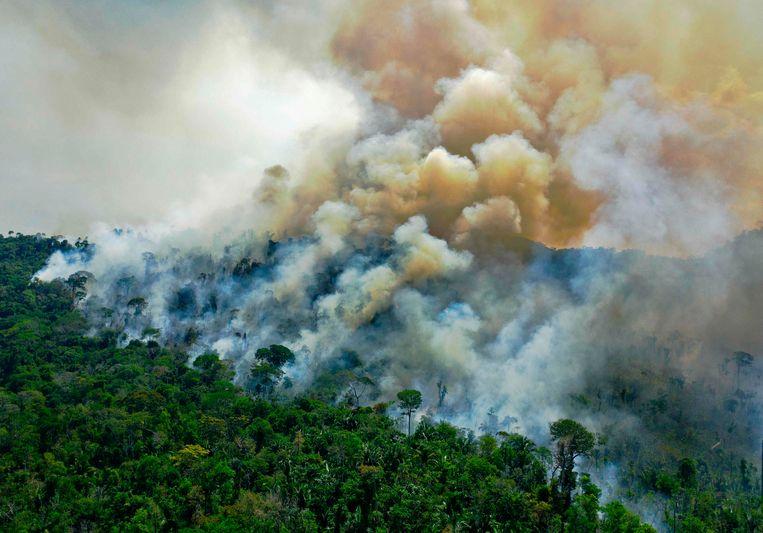 Rook kringelt op uit het Amazonewoud in Brazilië. Beeld van augustus vorig jaar. Beeld AFP