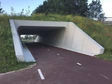 Vooralsnog geen duiker onder Kempenweg door, gemeente Oirschot beraadt zich op plan