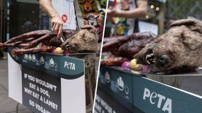 Dierenrechtenactivisten choqueren met 'hond' op barbecue in drukste winkelstraat van Sydney