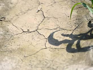 Natte natuur en landbouw: hier gaan de nieuwe Vlaamse investeringen tegen droogte naartoe