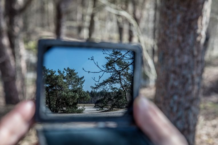 Het landschap weerspiegeld in een Claudespiegel. Beeld Natascha Libbert