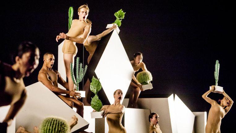 Cacti van Alexander Ekman. Beeld Joris-Jan Bos