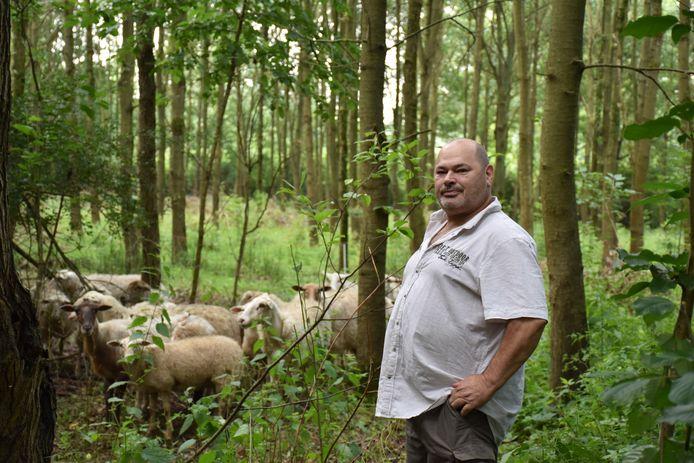 Volgens Rutten waren de schapen er slecht aan toe. De herder ontkent dat.