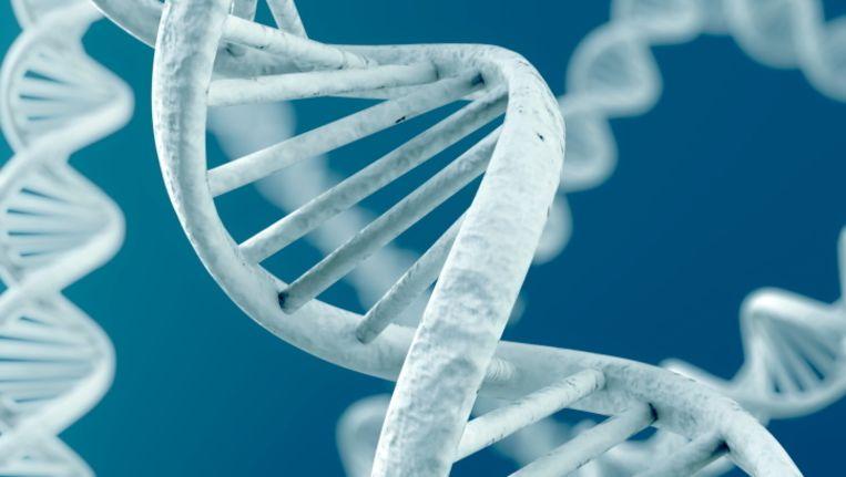 Vandaag buigen Amerikaanse topjuristen zich over de vraag of 'geïsoleerde' genen nog tot het menselijk lichaam behoren.