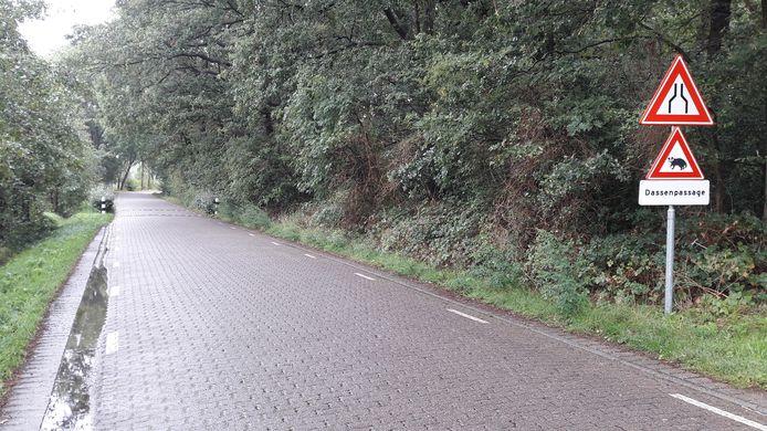 Zeeweg, Ermelo ter hoogte van de dassenpassage, dassen
