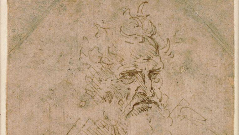 Leonardo da Vinci Beeld