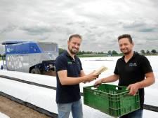 Revolutie in aspergeteelt: oogst van 9000 stuks per uur met (bijna) volautomatische baantjestrekker