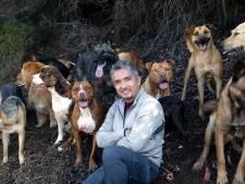 'Dog whisperer' Cesar Millan in opspraak: 'Zijn pitbull valt mensen aan en doodde hondje van Queen Latifah'