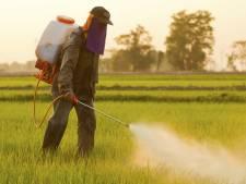 """Pesticides: """"peu probable"""" que le glyphosate soit cancerogène"""