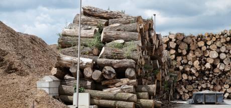 Procedure tegen 23 biomassacentrales in Brabant