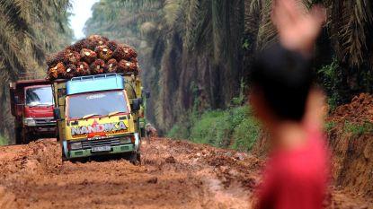 Palmolieactivisten vermoord in Indonesië