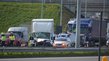 Kilometerslange file op E403 na botsing tussen vrachtwagens, MUG-heli landt in weide