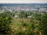 Zwaargetroffen bossen in Leersum weer deels toegankelijk: minstens 350 hectare weer open