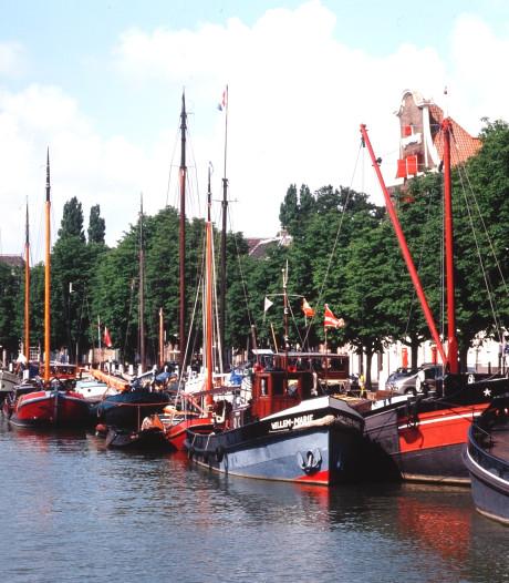Kastanjes horen niet langs de Dordtse havens te staan