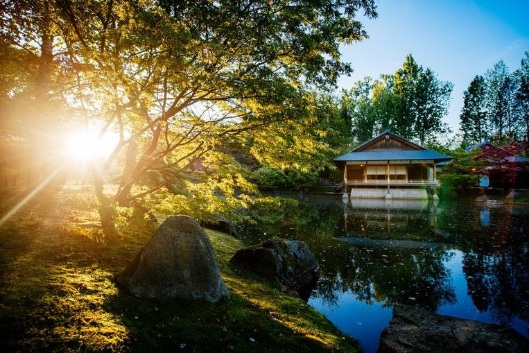 De Japanse tuin in Hasselt Beeld Toerisme Hasselt