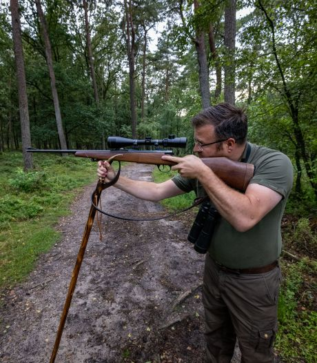 Leendert schiet record aan zwijnen dood op de Veluwe: 'Na een schot heb ik gemengde gevoelens'
