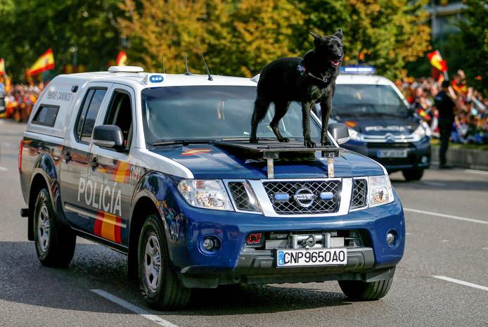 Een politiehond rijdt mee tijdens de parade op de Nationale Feestdag van Spanje in Madrid. Foto Andrew Winning