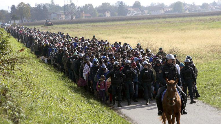 Vluchtelingen worden door de politie te paard begeleid in Slovenië. Beeld null