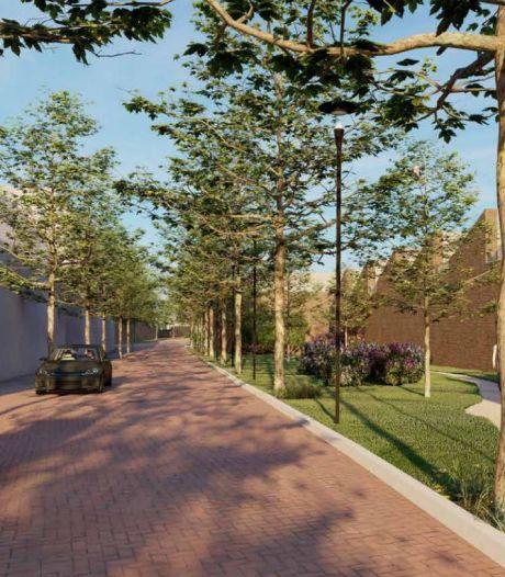 Compromis voor lelijkste plek van Oisterwijk: volume omlaag langs de Baerdijk