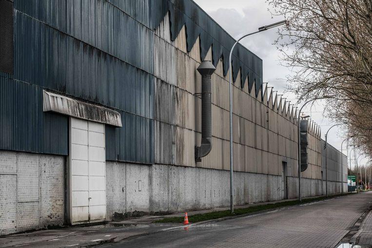Het dak van de Etex-vestiging in Tisselt bevat oude asbestplaten. Bij frictie, door wind bijvoorbeeld, dwarrelt er stof naar beneden. Beeld Bas Bogaerts