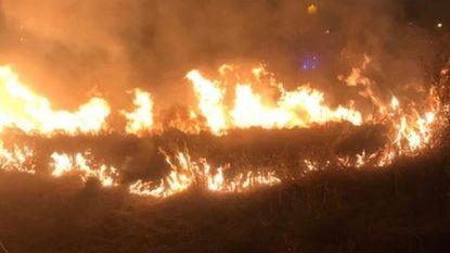 Vuurzee in Kykhillpark: 300 m² helmgras brandt weg
