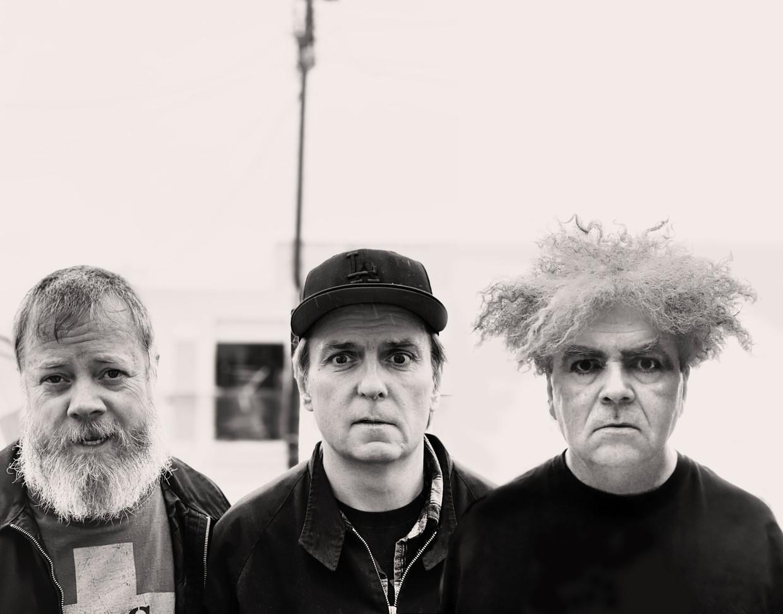 Melvins Beeld Melvins