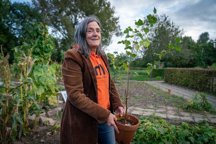 Arianne Nas op de locatie van de toekomstige bomenhub in Bemmel. Zij toont een jonge boom die voor de verzamelplek in aanmerking komt. Foto: Erik van 't Hullenaar.
