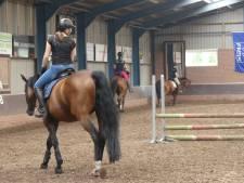 Nijverdalse claimt tonnen van manege in Den Ham na val van paard in 2008