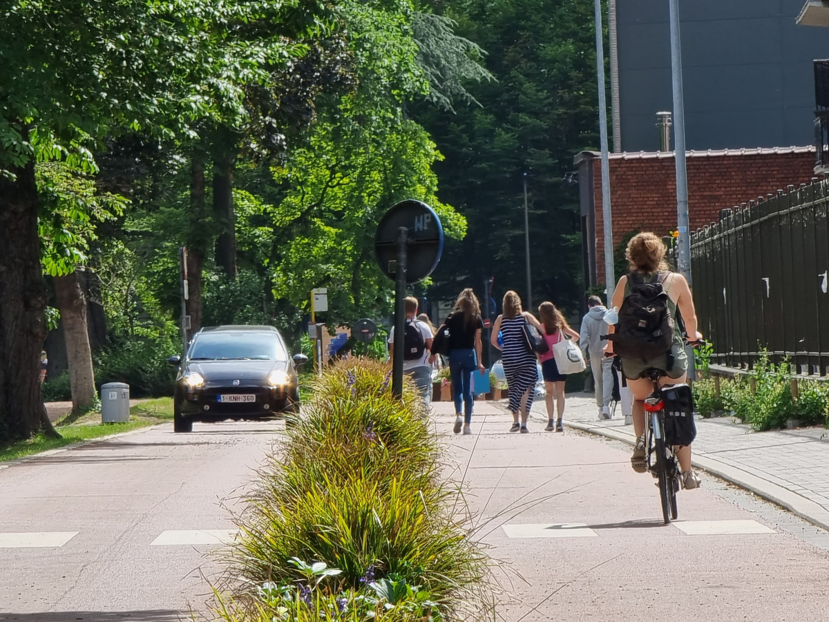 Een fietster rijdt over de Parklaan in Halle. Het was destijds de eerste fietsstraat in de stad.