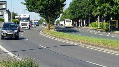 Gecrashte spookrijder op Bergensesteenweg had net voordien 67-jarige vrouw overvallen