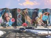 Organon vervangt logo op muurschildering: 'Hebben ons de kritiek aangetrokken'