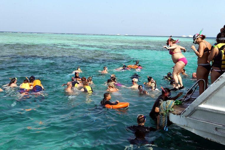 Toeristen snorkelen in de Rode Zee bij Sharm-el-Sheikh. Beeld EPA