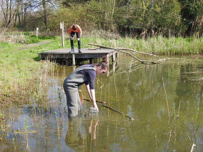 Aan de rand van een poel in Sint-Katelijne-Waver worden metingen gedaan.
