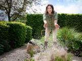 Zo geef je je tuin vlak voor de herfst een tweede leven