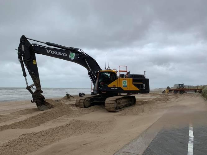 Kust wordt nog wat stormbestendiger: vier nieuwe strandhoofden maken het strand in Wenduine steviger
